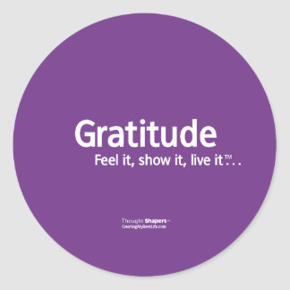 Gratitude Thought Shapers™ Stickers