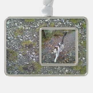 Gravel and grass silver plated framed ornament