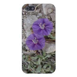 Gravel Flowers in Del Rio iPhone 5 Cover