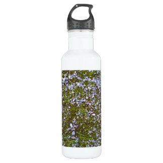 Gravel & Grass 710 Ml Water Bottle