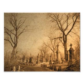 Graveyard Walk Photo