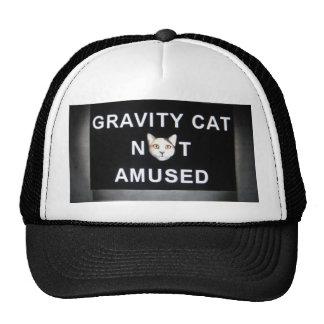 gravity cat not amused cap