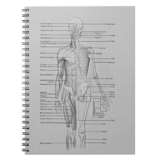 Gray Anatomy Spiral Note Book
