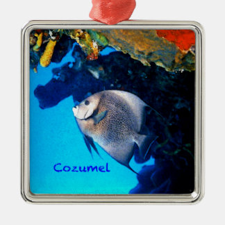 Gray Angelfish Silver-Colored Square Decoration