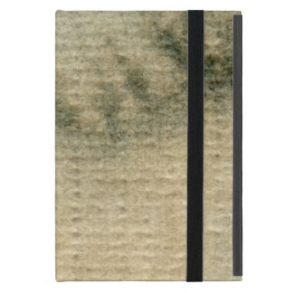 gray-blue background watercolor 6 iPad mini cover