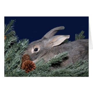 Gray bunny in pine card