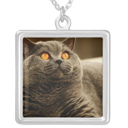Gray Cat Necklace
