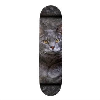 Gray Cat Skateboard Deck