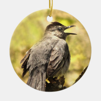 Gray Catbird Singing His Song Ornament