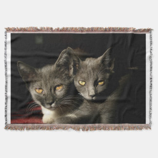 Gray Cats Photo Throw Blanket