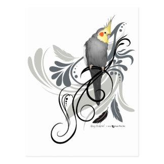 Gray Cockatiel Postcard