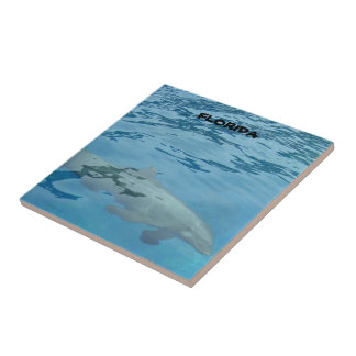 Gray dolphin swims underwater small square tile