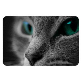 Gray Furred Cat with Striking Green Eyes Rectangular Photo Magnet