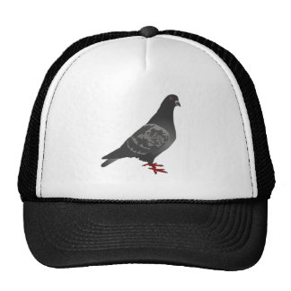 Gray/Grey Pigeon Cap