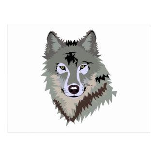 Gray Grey Wolf Post Card