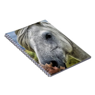 Gray Horse Face Spiral Notebook