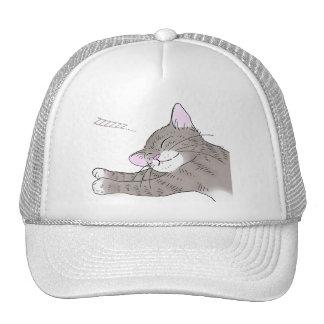 Gray kitten which dozes mesh hats