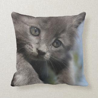 Gray kitty pillow