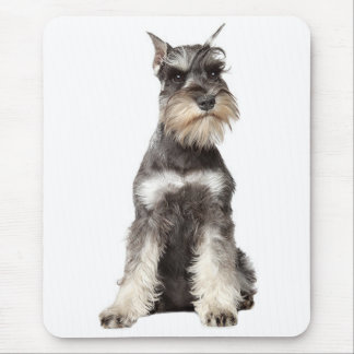 Gray Schnauzer Puppy Dog Mousepad
