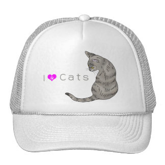 gray tabby cat (yellow eyes) mesh hats