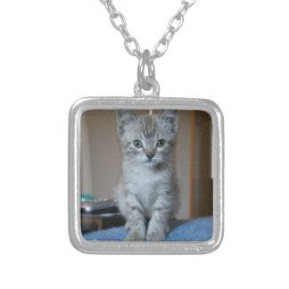 Gray Tabby kitten Pendant