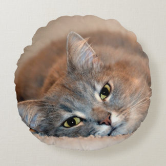 Gray, Tan, White Long-Haired Cat by Shirley Taylor Round Cushion