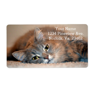 Gray, Tan, White Long-Haired Cat by Shirley Taylor Shipping Label