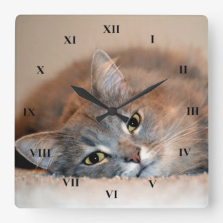Gray, Tan, White Long-Haired Cat by Shirley Taylor Square Wall Clock