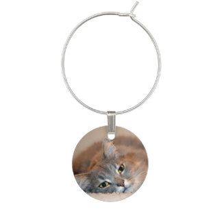 Gray, Tan, White Long-Haired Cat by Shirley Taylor Wine Charm