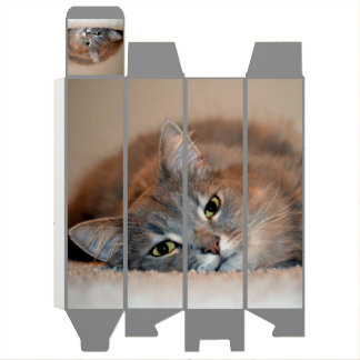 Gray, Tan, White Long-Haired Cat by Shirley Taylor Wine Gift Box