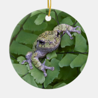 Gray tree frog on fern, Canada Round Ceramic Decoration