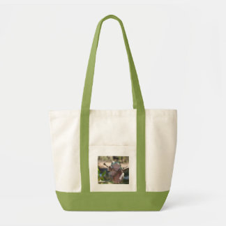 Gray tree frog tote bags