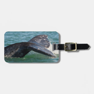 Gray Whale Tail Luggage Tag