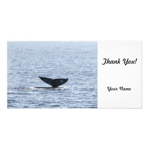Gray Whale Tail Customized Photo Card