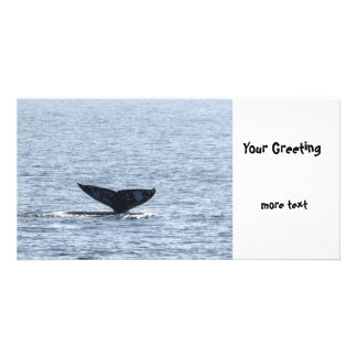 Gray Whale Tail Photo Greeting Card