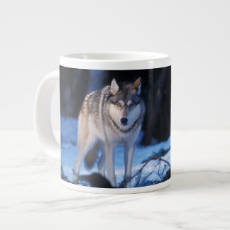 gray wolf, Canis lupus, in the foothills of the 3 Large Coffee Mug