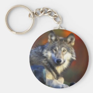 Gray Wolf, Endangered Species Digital Photography Basic Round Button Key Ring