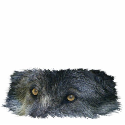 GRAY WOLF EYES (sculpted) Wildlife Gift Item Cut Out
