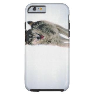 Gray wolf running tough iPhone 6 case