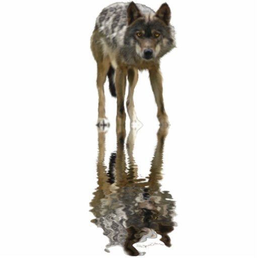 GRAY WOLF (sculpted) Wildlife Magnet Acrylic Cut Outs