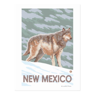 Gray Wolf StandingNew Mexico Post Card