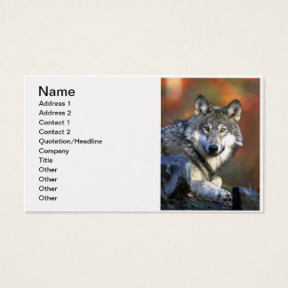 Gray Wolf - Timber Wolf - Red Wolf Series Business Card