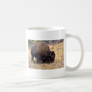 Grazing bison, Yellowstone National Park Coffee Mugs