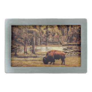 Grazing Buffalo Belt Buckle