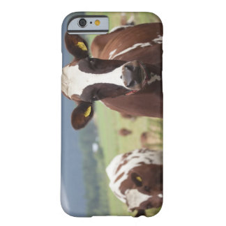 Grazing cows barely there iPhone 6 case
