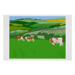 Grazing Cows Posters