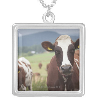 Grazing cows square pendant necklace