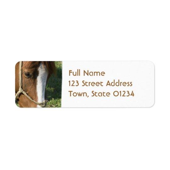 Grazing Draught   Horse Return Adress Mailing Return Address Label