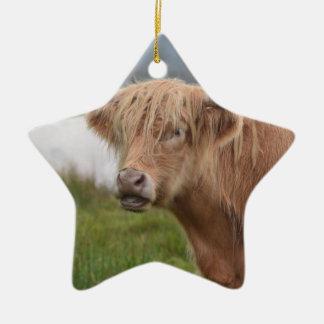 Grazing Highland Cow Ceramic Star Decoration