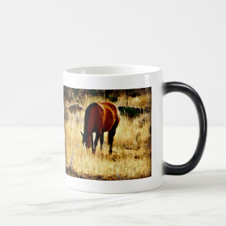 Grazing Horse Morphing Mug